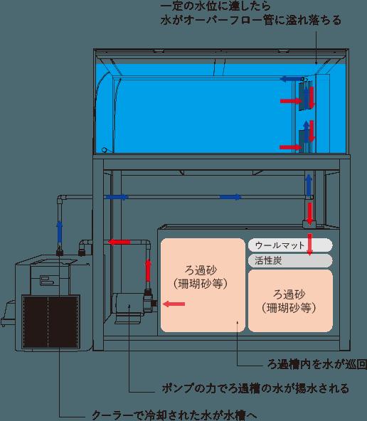一般的な水槽の仕組み図解