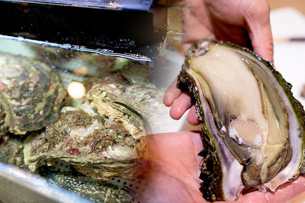 牡蠣の写真
