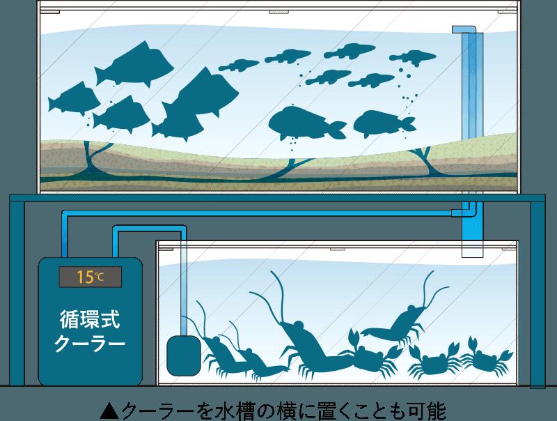 オーバーフロー水槽循環式クーラー