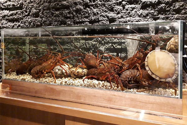 90cm活魚水槽・生簀
