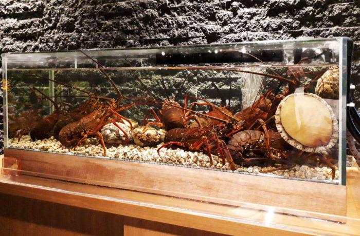 大阪の西天満にある高級海鮮と極上肉の鉄板焼店の生け簀水槽