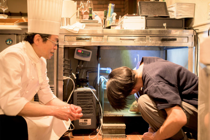活魚水槽 K's Kitchen様