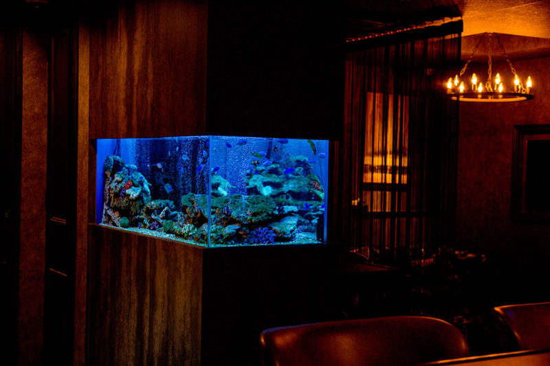 水槽メンテナンス 大阪府八尾市に設置した海水魚水槽