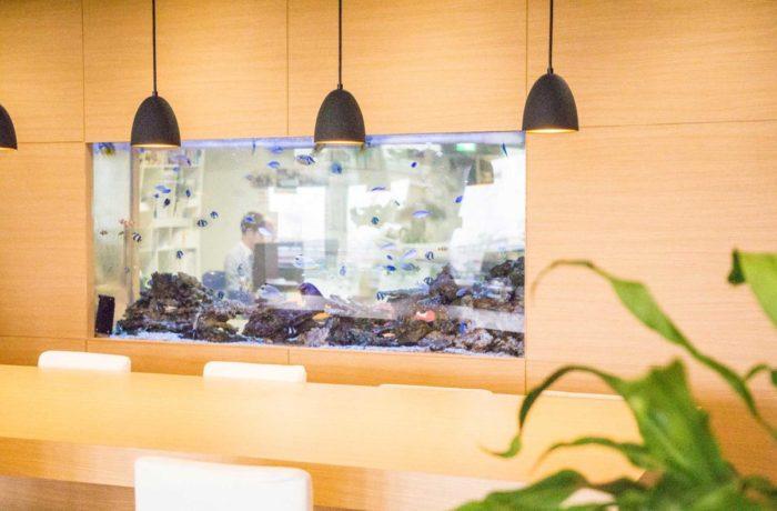 執務室とロビーの間を仕切る海水魚水槽の設置