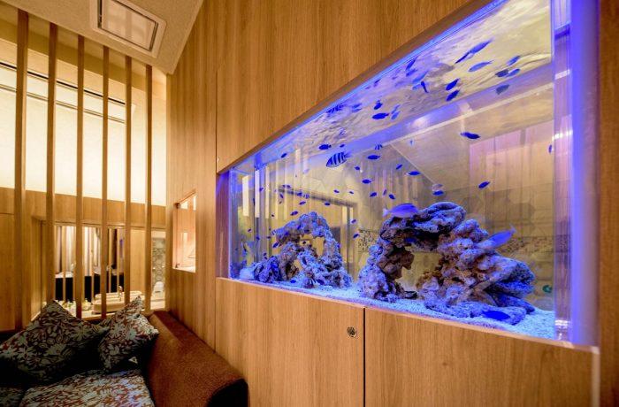 神戸のデザインホテルの客室に設置した海水魚水槽