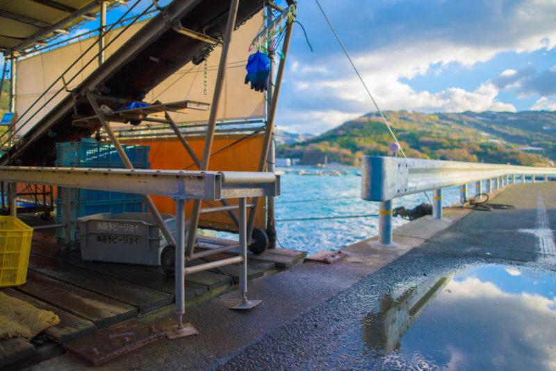 漁港の一角