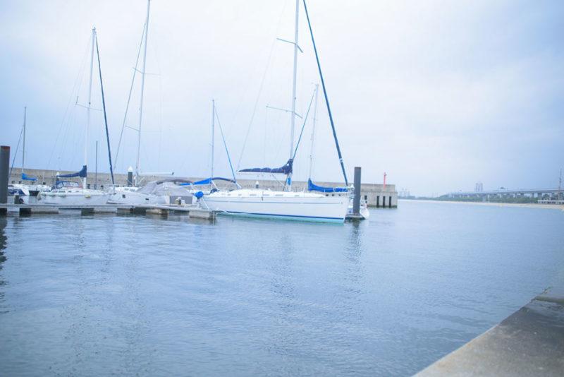 水槽設置前に天然海水を汲みに海へ