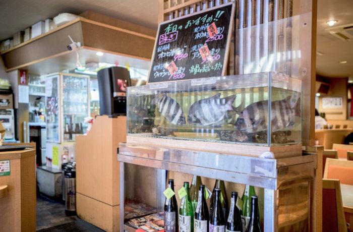 奈良県に設置した季節の近海魚を活かす生簀水槽