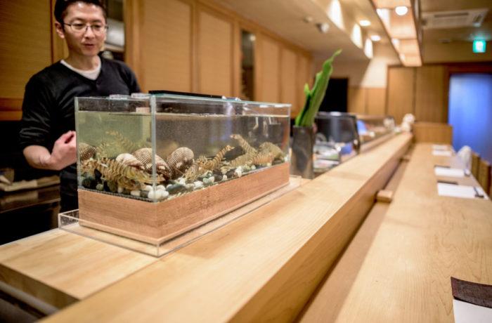 京都の寿司店 カウンタータイプの生簀水槽