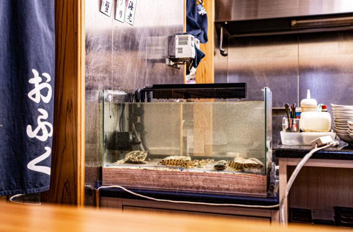 大阪の泉州の食材が入る活魚水槽