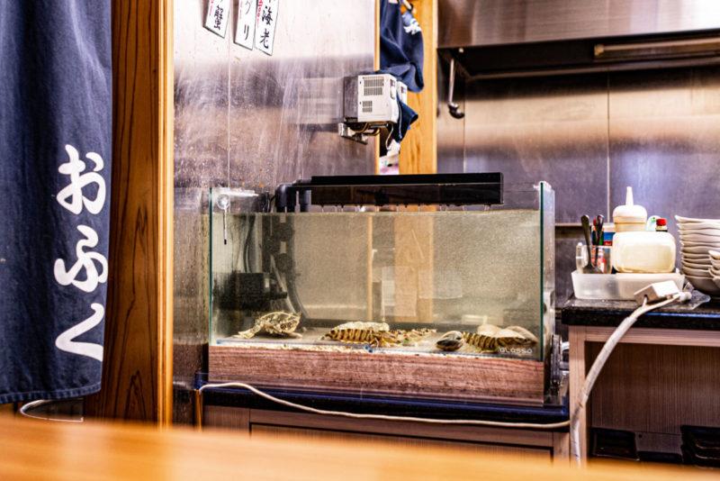 大阪「おふく」様の活魚水槽