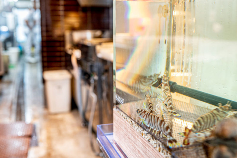 車海老や赤貝が入った活魚水槽